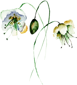 Meg and Kennedy Flower